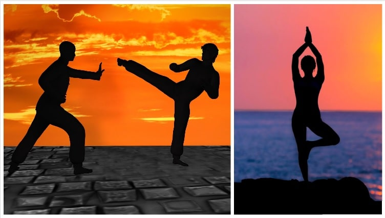 Facts about India (Yoga - Martial Arts)