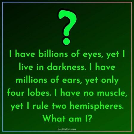 Batman Riddles - Riddlers Riddles (6)